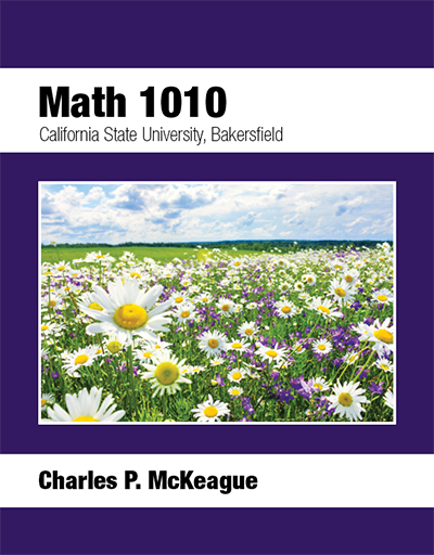 picture of Bakersfield Math 1010