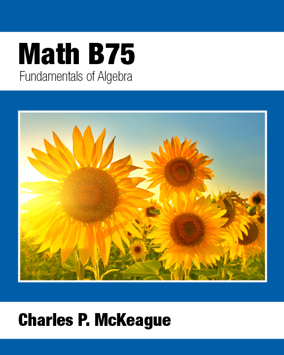 picture of Math B75: Fundamentals of Algebra