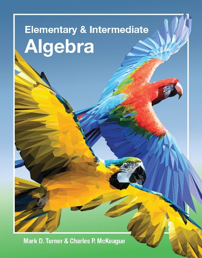 picture of Elementary and Intermediate Algebra