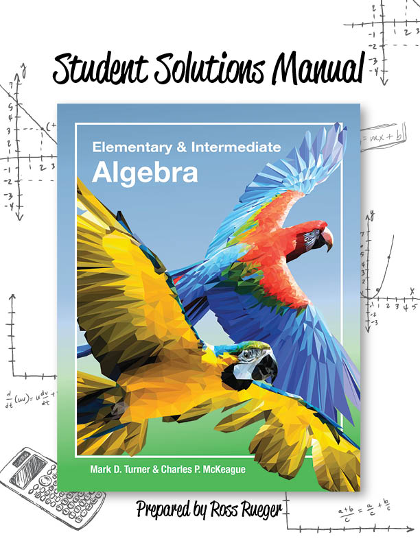 picture of Student Solutions Manual for Elementary & Intermediate Algebra