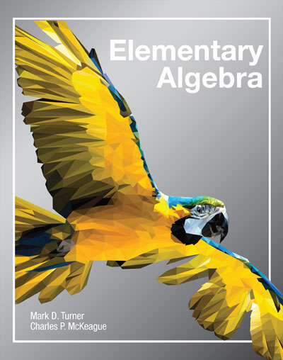 picture of Elementary Algebra