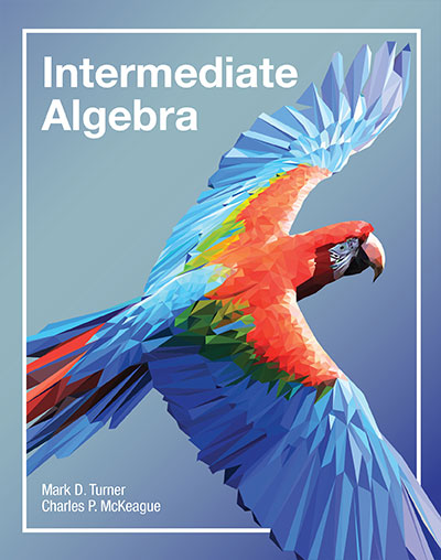 picture of Intermediate Algebra