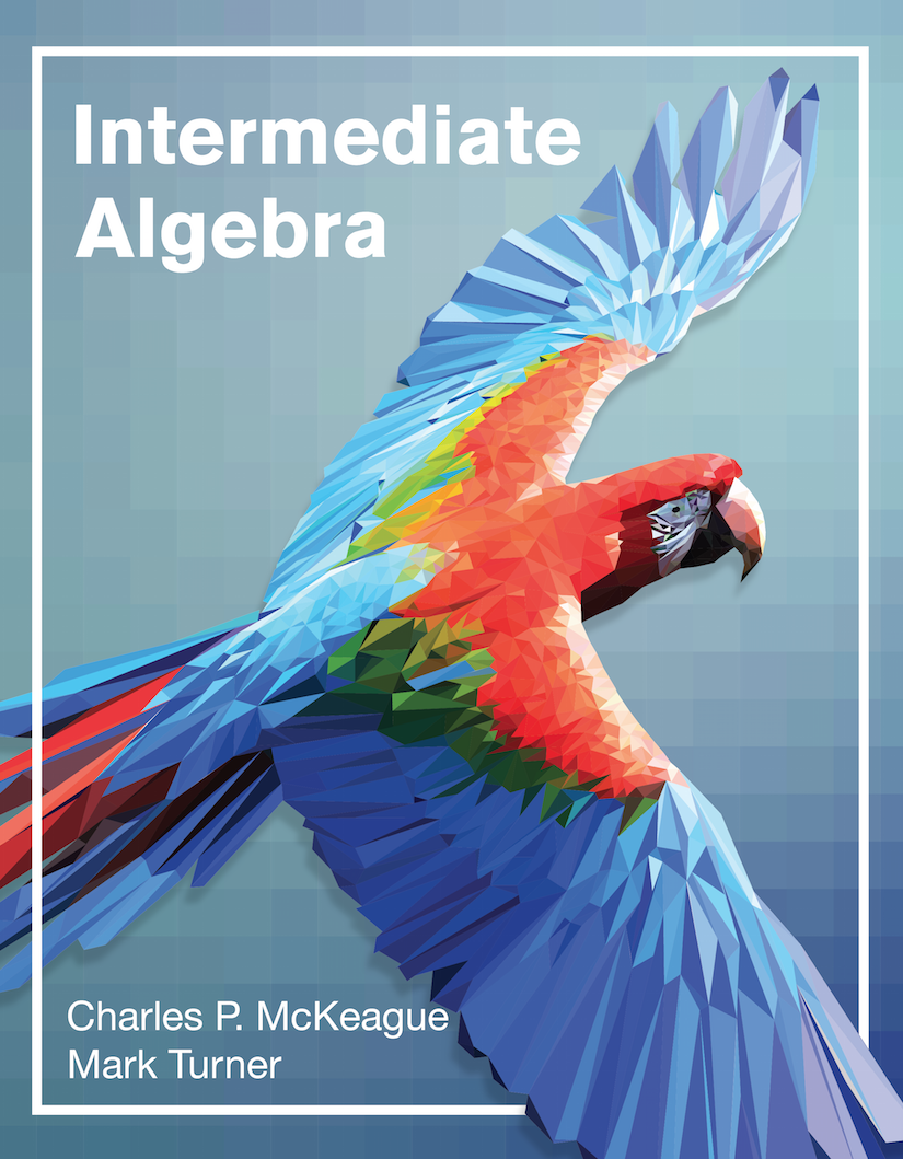 cover of Intermediate Algebra